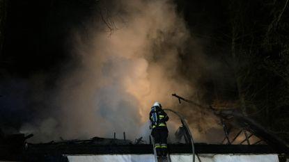80-jarige dame ongedeerd bij uitslaande woningbrand in Schilde