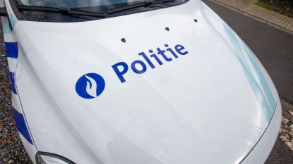 Tal van inbreuken bij grote controle langs Zuiderlaan in Zellik