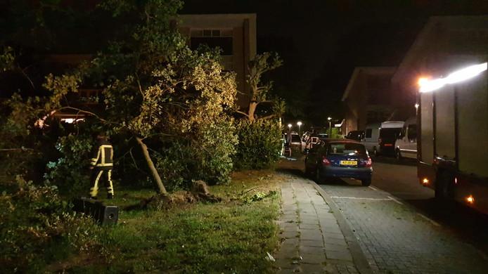 Ommerbos, Enschede.