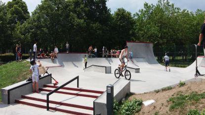 Skatepark op Dassenveld tegen Pasen 2019