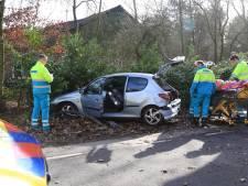 Twee gewonden na botsing tegen boom en paal in Vlierden