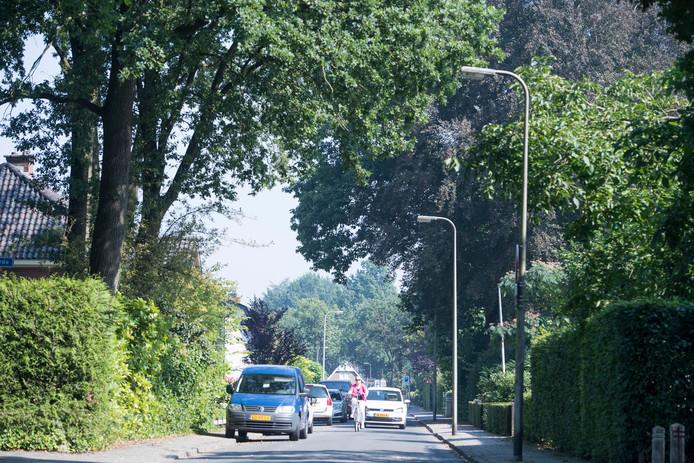 Inwoners van Borne maken zich druk over de verkeersveiligheid. Recent werd de Oude Deldensestraat tussen Europastraat en de Hofstraat een 30 kilometerzone.