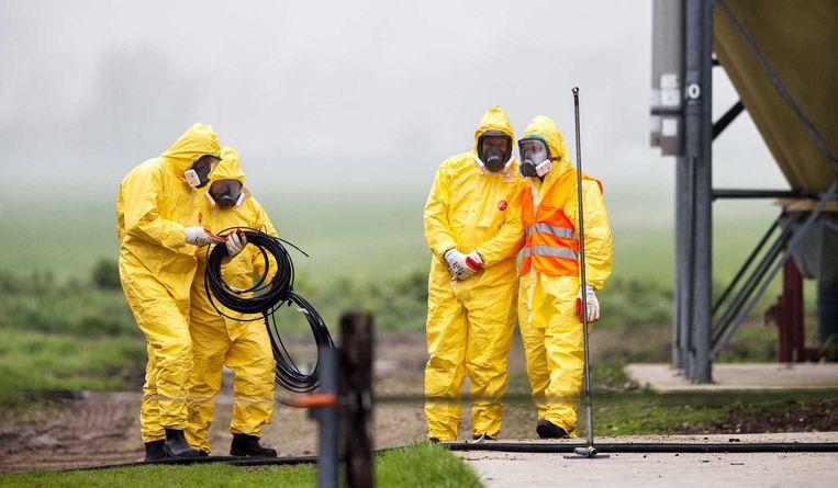 Eind november: leden van een ruimploeg treffen voorbereidingen bij het legpluimveebedrijf in Zoeterwoude waar vogelgriep is vastgesteld. De 28.000 kippen werden geruimd. Beeld anp
