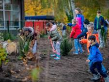 Leerlingen pakken de schep: Apeldoorn heeft tweede minibosje