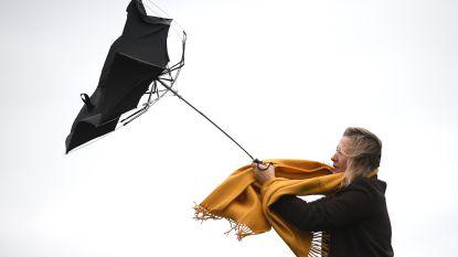 Hoe uitzonderlijk is een storm als Ciara, met windstoten tot 130 km/u?
