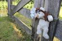 Bij de plek waar de 14-jarige Romy Nieuwburg uit Hoevelaken werd gevonden hangt een beertje en een ketting met een hartje aan een houten hek.