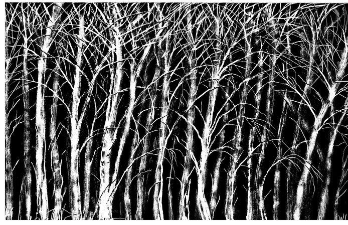 Wim Hofman woud