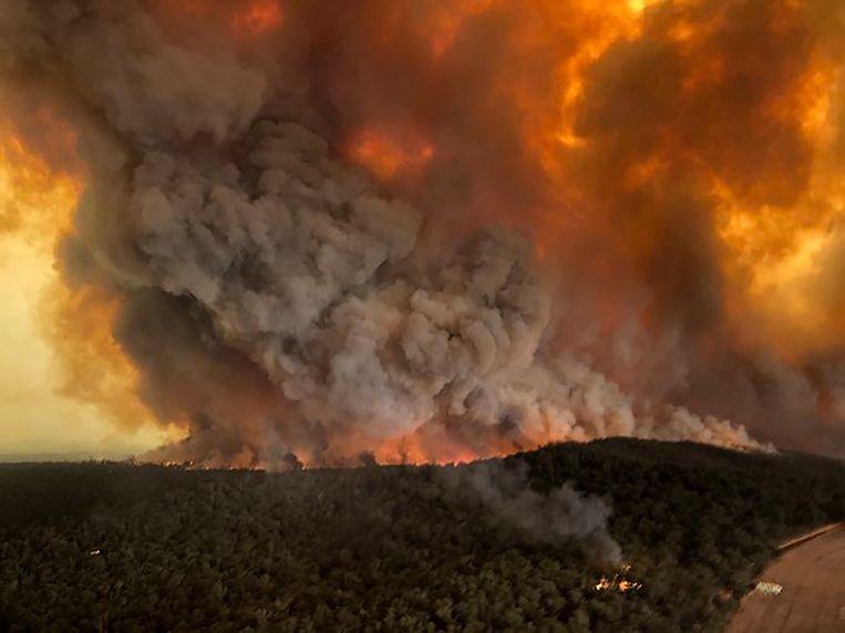 Enorme rookpluimen in bosgebied rond het Australische Bairnsdale, foto genomen op 30 december 2019.