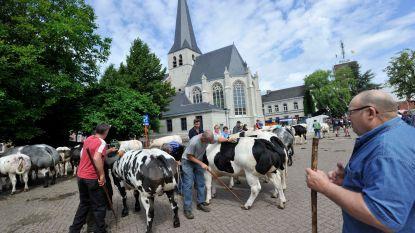 Lang feestweekend met kermis, processie en jaarmarkt