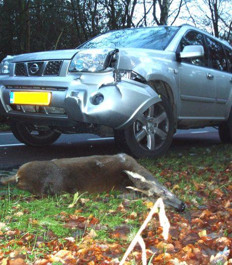 De dodelijke wegen van Noord-Brabant