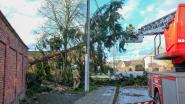 Gemeente roept inwoners op om stormschade te melden