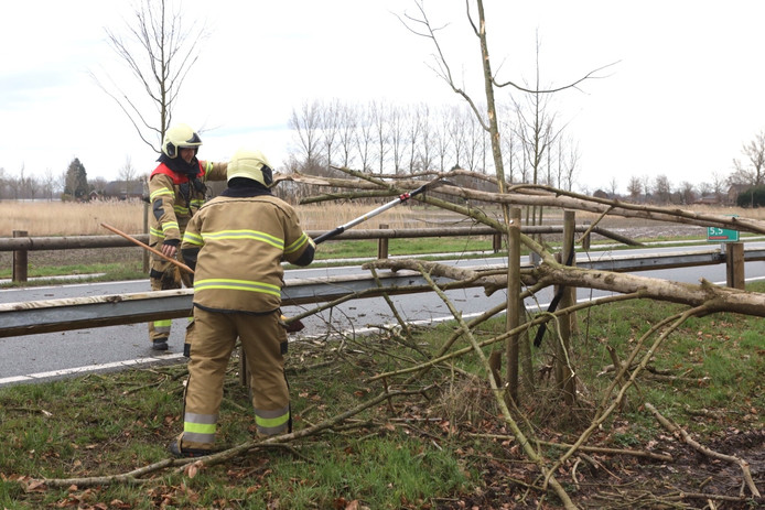 De brandweer heeft de boom in stukken gezaagd.