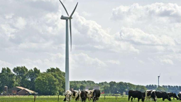 Foto: Hollandse Hoogte Beeld