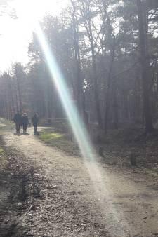 Potloodventer in bos bij Bilthoven: 'Niet prettig, hier gebeuren meer rare dingen'