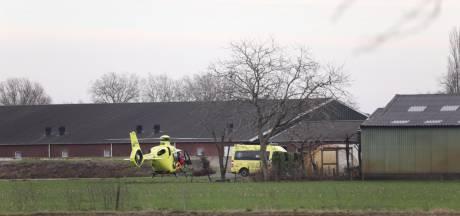Man komt om tijdens werkzaamheden op boerderij tussen Loosbroek en Nistelrode