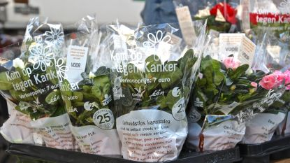 Gezocht: vrijwilligers voor Plantjesweekend Kom op tegen Kanker