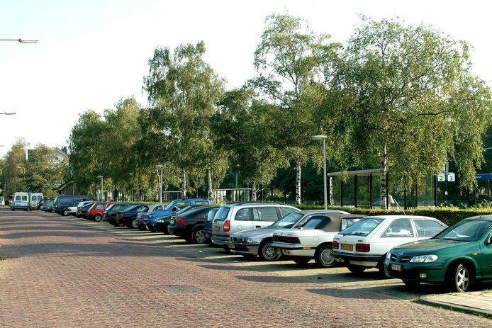 Parkeervakken tegenover het gemeentehuis aan de Parklaan.