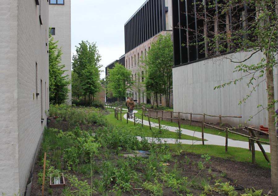 Beeld uit de duurzame wijk in Wijnegem bij Antwerpen.