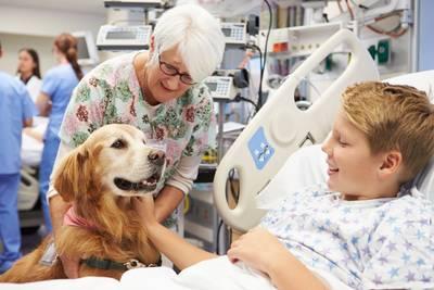 Hoe een dier je kan helpen bij fysieke of psychische klachten
