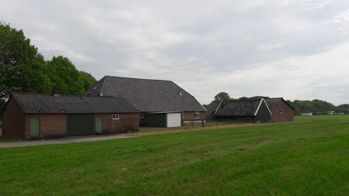 Het perceel van Kees Koolen aan de Polweg in Wichmond.