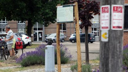 Treed in de voetsporen van Willem Elsschot tijdens literaire wandeling in Blauberg