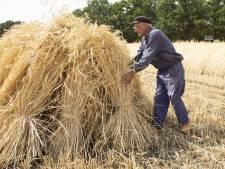 Dierbare herinneringen komen boven op oogstdag in Holten