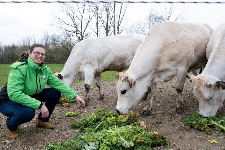 Evi Van Camp in actie op zorgboerderij Tallaart.