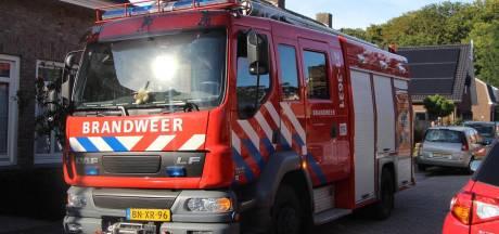 Brand in kliko slaat over naar heg in Sint-Michielsgestel