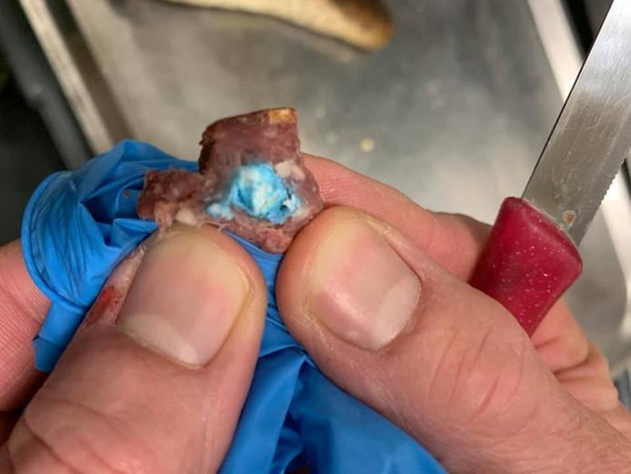 Het gevonden stukje worst met gif in de vorm van blauwe tabletten.