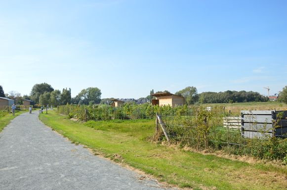 Volkstuinsite 'Graafland' in Ninove.