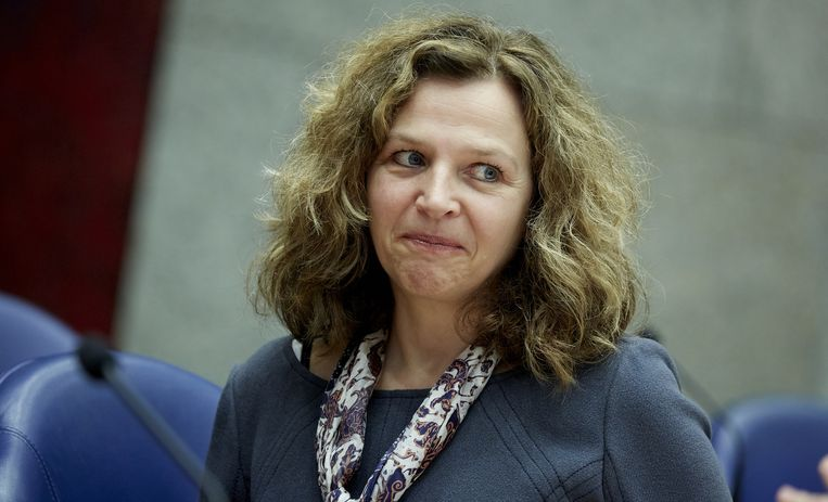 Minister Edith Schippers Beeld anp