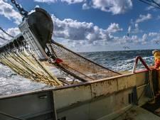 Scheveningse vissers in zak en as: 'We kunnen weer opnieuw beginnen'