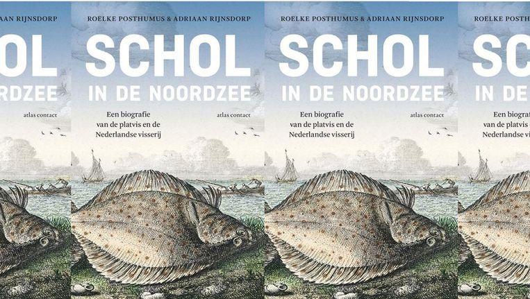 Schol in de Noordzee, Roelke Posthumus en Adriaan Rijnsdorp. Beeld null