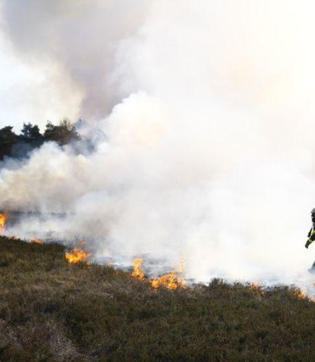 Politie pakt mogelijke brandstichter heidebrand Veluwe op na achtervolging