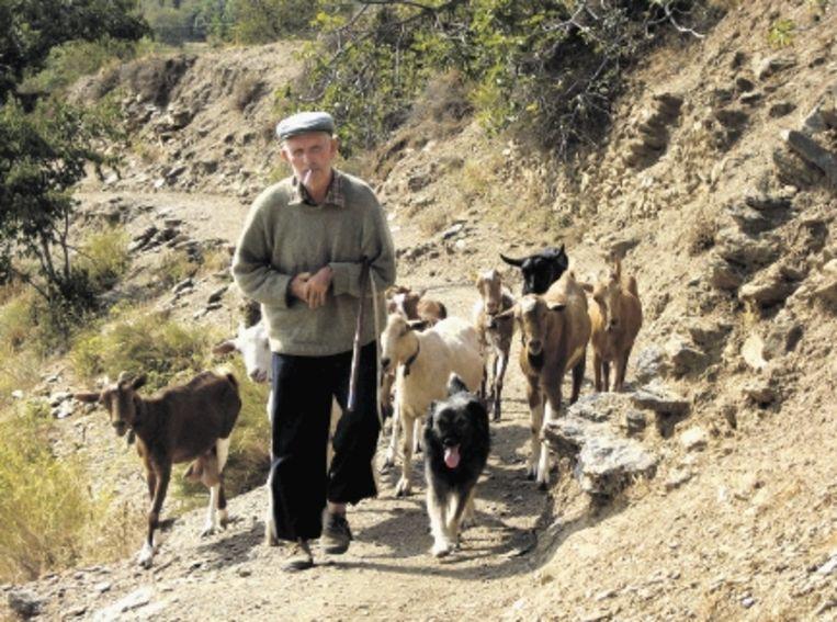 In de bergen kom je bijna niemand tegen, hooguit een herder met zijn kudde. De witte dorpjes doen Noord-Afrikaans aan. (FOTO'S STAP REIZEN) Beeld