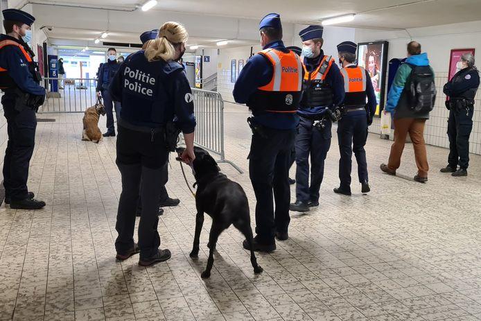 Tijdens één van de acties in het station werd ook een drugsdetectiehond ingezet.