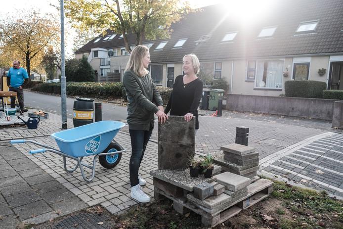 In Duiven konden inwoners vorig jaar tegels inruilen voor tuinplanten om zo tuinen te vergroenen.