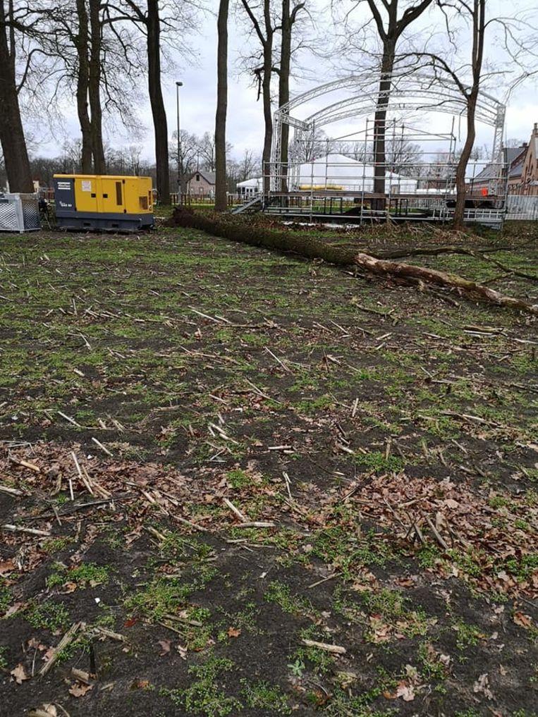 De gesneuvelde boom op het domein van Cyclocross Merksplas