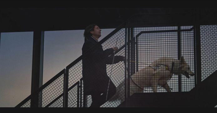 Harry en Oreo in de spot van Nationale Loterij