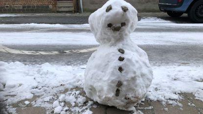 Laatste stuiptrekkingen van de sneeuwpret in Edegem en Kontich