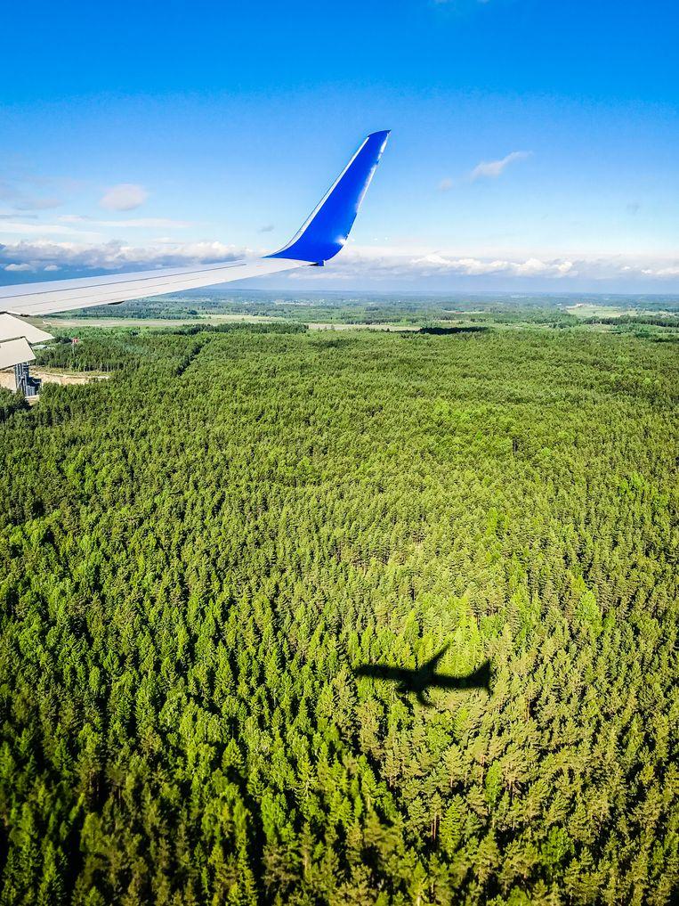 De bossen bij Stockholm Arlanda Flygplats, de belangrijkste luchthaven van Zweden. Beeld Getty
