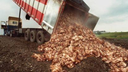 20 jaar (!) na dioxinecrisis eindelijk  rechtszaak over schade die vetsmelter Verkest aanrichtte: voedselagentschap eist 24 miljoen euro