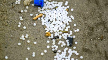 Nederland start onderzoek naar impact plastic rommel op dieren in Waddenzee