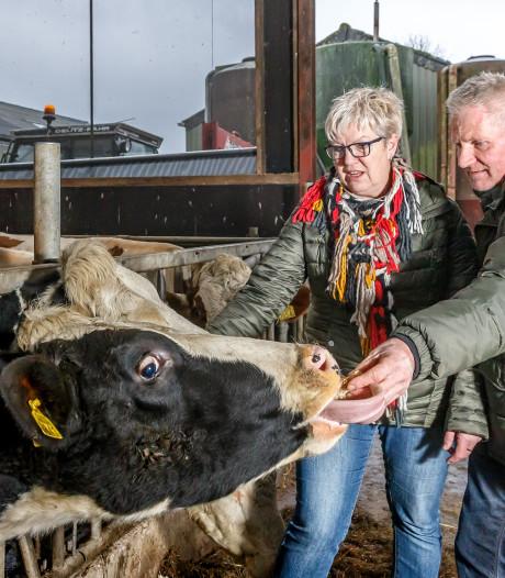 Educatieboeren oogsten waardering in Genemuiden: 'kijk, daar loopt boer Vos'