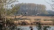 Graafmachines aan de slag in natuurgebied tijdens broedperiode: werken stilgelegd na telefoontje van alerte buur