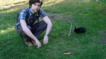 """Antwerps stadspark overspoeld door tamme konijnen: """"Ze worden in het park gedumpt door hun baasjes die op vakantie vertrekken"""""""