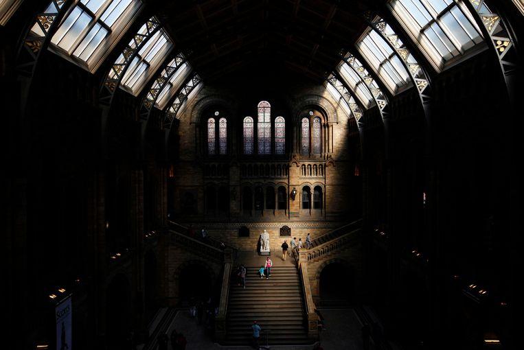 Hal van het Natural History Museum in Londen. Beeld Reuters