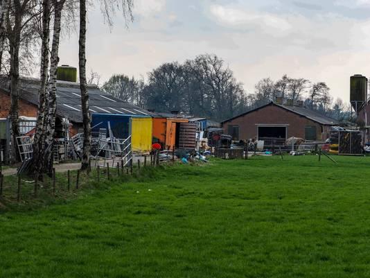 Het verrommelde terrein aan de Spankerenseweg in Leuvenheim waarop in een loods tientallen dode en verwaarloosde dieren werden aangetroffen.