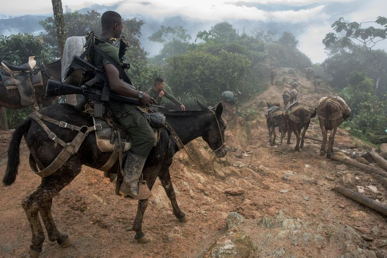 The commanders ride stubborn mules, while the other guerrilleros have to walk. Beeld Stephen Ferry