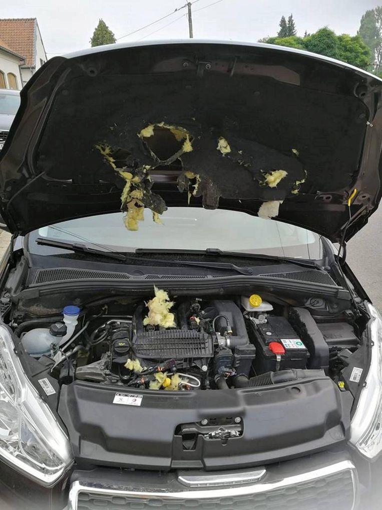 Heel wat schade onder de motorkap.